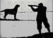 The Indigo Terror by Satyajit Ray